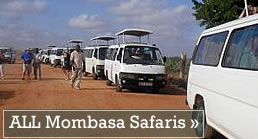 All Mombasa Safaris