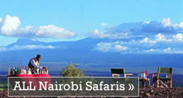 All Nairobi Safaris